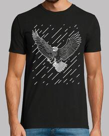 Aguila lluvia