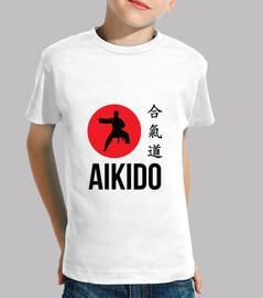 aikido / arte marziale