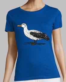 Albatros / Diomedeidae / Alcatraz / Pel