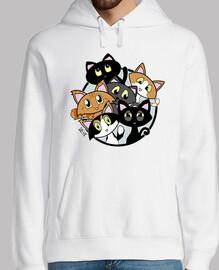 amant de chat - amoureux de les chats