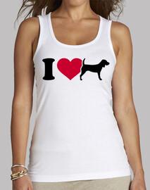 amo beagles