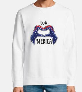 amore stati uniti america usa cuore