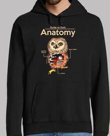anatomía de los búhos
