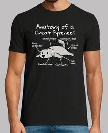 Anatomía De Un Perro Gran Pirineo