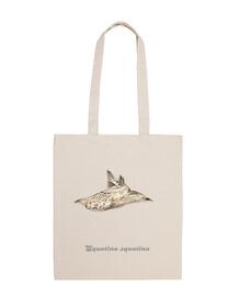 angelfish, spalla angelo squalo