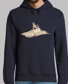 Angelote, tiburón angel jersey