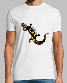 Aposematismo. Salamandra