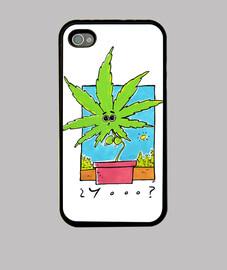 apple - la marijuana