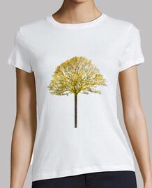 arbre v