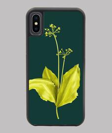 art botanique plante ail sauvage