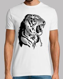 attaque de tigre