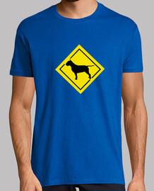 attenzione bull terrier