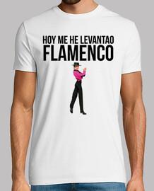 aujourd'hui je me suis réveillé le flamenco