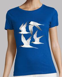 Aves marinas 1