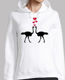 avestruz pareja corazones rojos