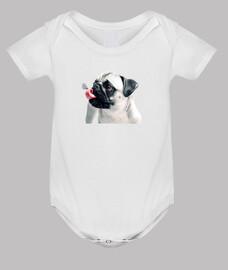 baby body, white pug carlino language