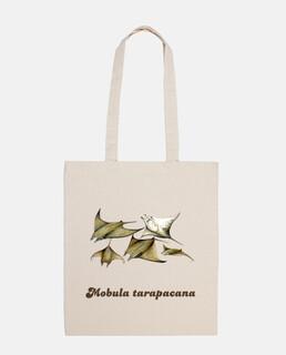 bag manta ray (mobula tarapacana)