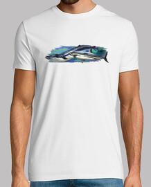 baleine et requin