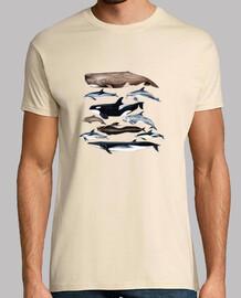 balene, capodogli, balene e delfini t-shirt