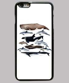 Ballenas, cachalotes, rorcual y delfines funda