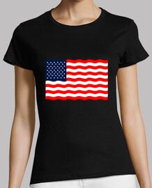 Bandera americana estados bnidos