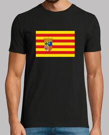 Bandera Aragón con escudo