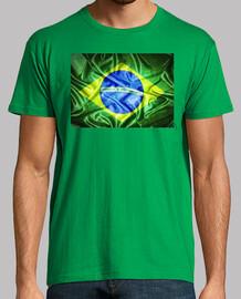Bandera de Brasil en seda.