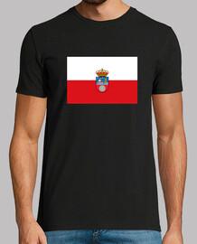 Bandera de Cantabria con escudo