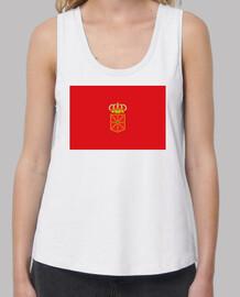 Bandera de Navarra con escudo