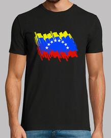 Bandera de Venezuela 2