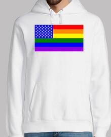 bandera del arco iris usa