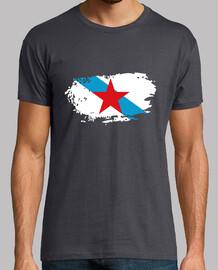 Bandera, Nacionalista Galega