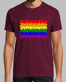 Bandera Puzzle LGTBI
