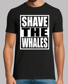 barba le balene