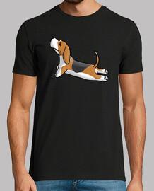 basset hound yoga