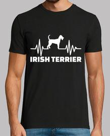 battito cardiaco irish terrier