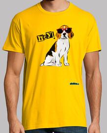 Beagle moderno