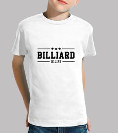 billiard is life