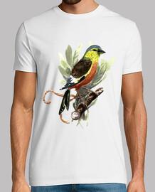 Bird - Acuarela