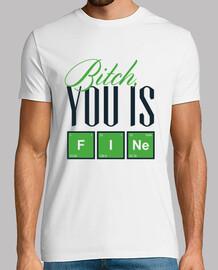 bitch you is fine