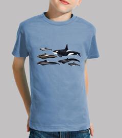blackfish: orcas et globicéphales chemise enfant