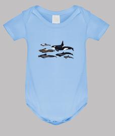 Blackfish: orcas y ballenas piloto body bebe