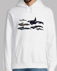 blackfish: orche e balene pilota jersey uomo