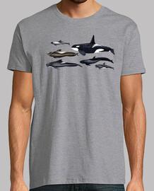 blackfish: orche e balene pilota t-shirt