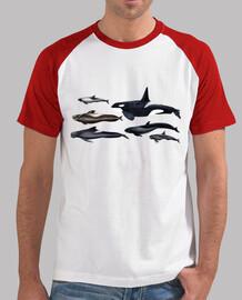 blackfish: orche e balene pilota t-shirt di baseball