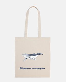 blosa humpback whale baby (megaptera novaean