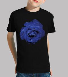blue rose water drops