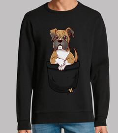 bolsillo boxeador lindo cachorro