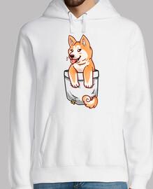 bolsillo lindo perrito akita