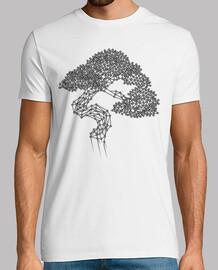 bonsaï géométrique